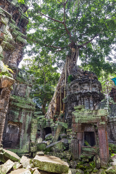 Ancient Ta Prohm or Rajavihara Temple ruins at Angkor, Siem Reap Stock photo © tuulijumala