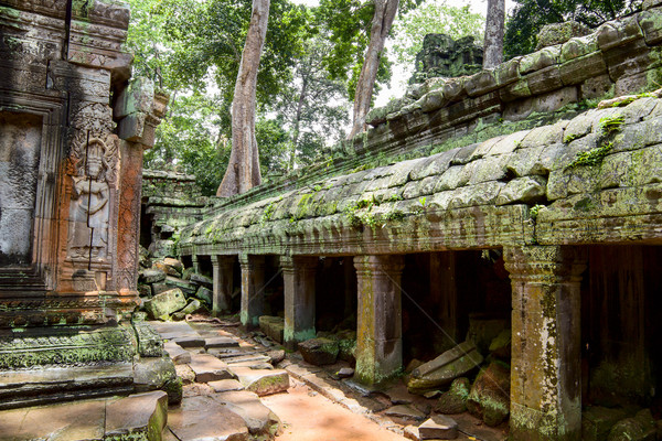 Ancient ruins in Ta Prohm or Rajavihara Temple  at Angkor, Siem  Stock photo © tuulijumala