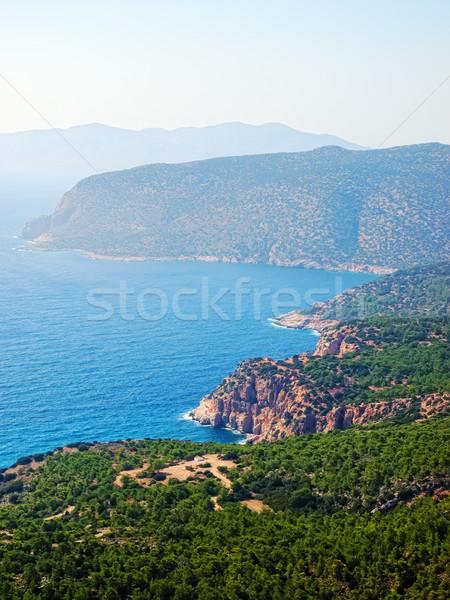 Kustlijn Griekenland boom landschap zee Stockfoto © tuulijumala