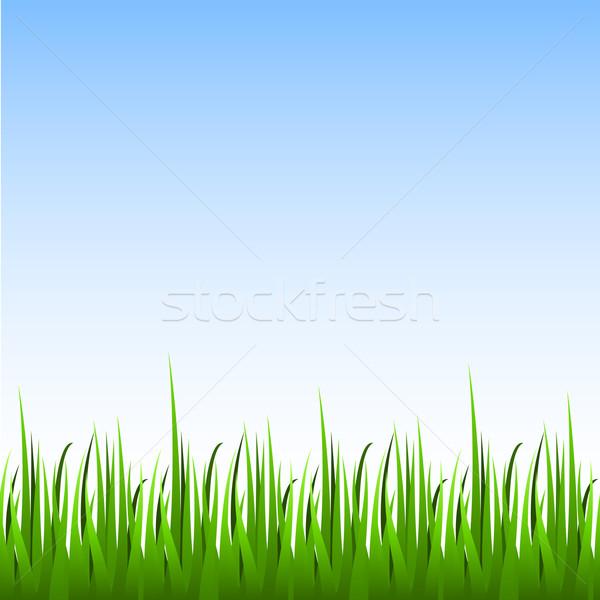 Naadloos groen gras blauwe hemel horizontaal vector voorjaar Stockfoto © tuulijumala