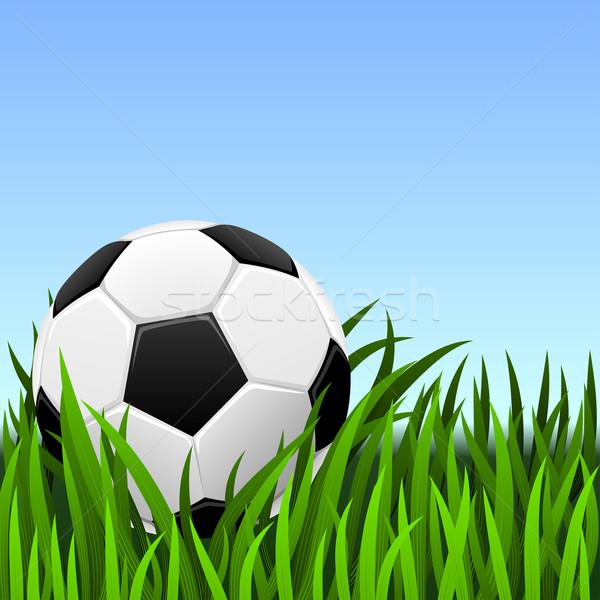 Voetbal klassiek voetbal groen gras hemel voetbal Stockfoto © tuulijumala