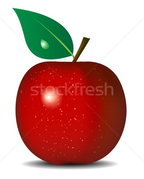 Vector illustration of fresh red apple isolated on white backgro Stock photo © tuulijumala