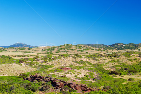 Menorca Island landscape in sunny day, Balearic Islands, Spain. Stock photo © tuulijumala