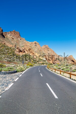Teide national park road in sunny day, Tenerife island, Spain. Stock photo © tuulijumala