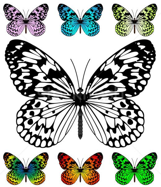 蝶 ベクトル テンプレート 簡単 ストックフォト © tuulijumala