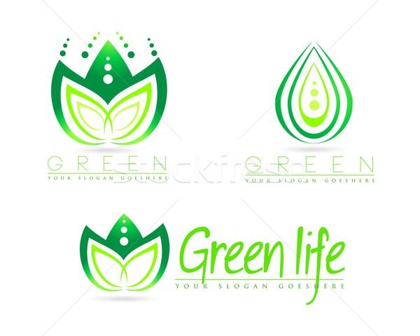 Logo creativa resumen vector flores Foto stock © twindesigner