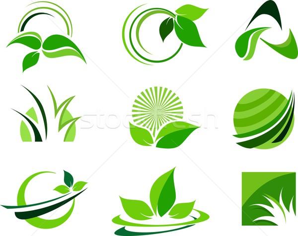 Vert design feuille icône vecteur Photo stock © twindesigner