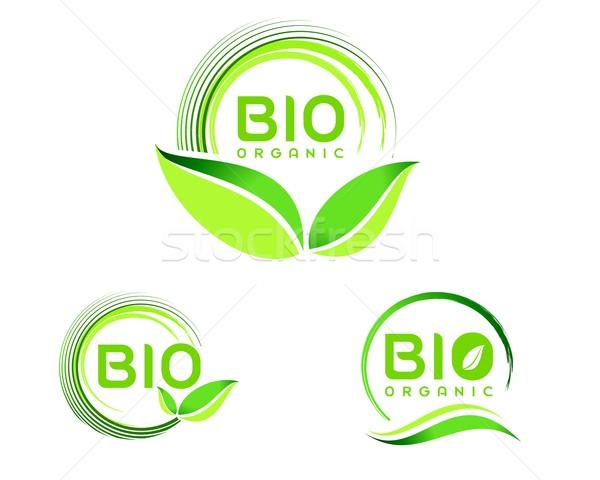 Bio Эко логотип икона дизайна зеленый Сток-фото © twindesigner