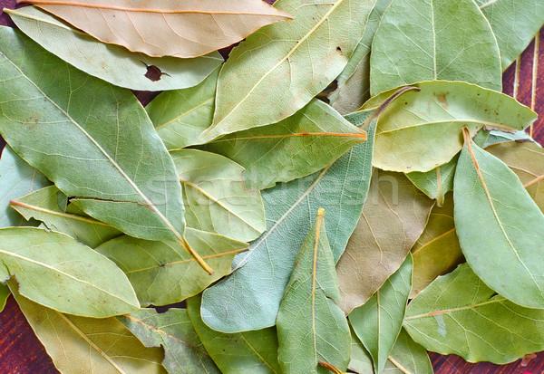 Laurel madera diseno hoja salud arte Foto stock © tycoon