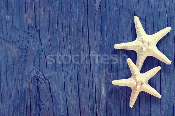 Estrellas de mar mar Shell mesa playa Foto stock © tycoon