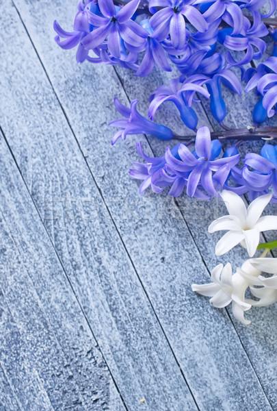 Flores primavera natureza beleza verão planta Foto stock © tycoon