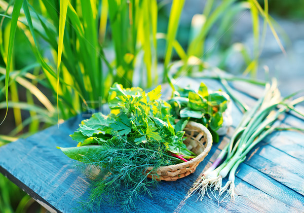 fresh greens Stock photo © tycoon