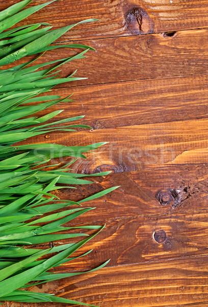 Grünen Gras Holz Frühling Gras Wand Blätter Stock foto © tycoon