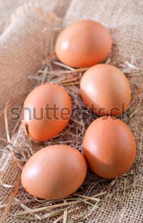 Nyers tojások húsvét fa tojás farm Stock fotó © tycoon