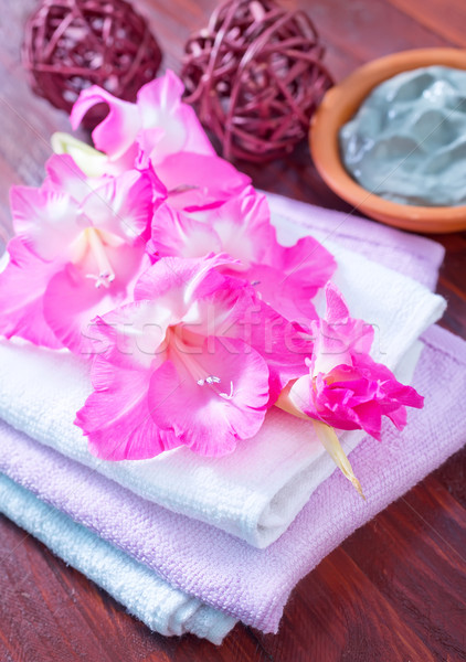 Toalhas primavera beleza grupo tecido planta Foto stock © tycoon