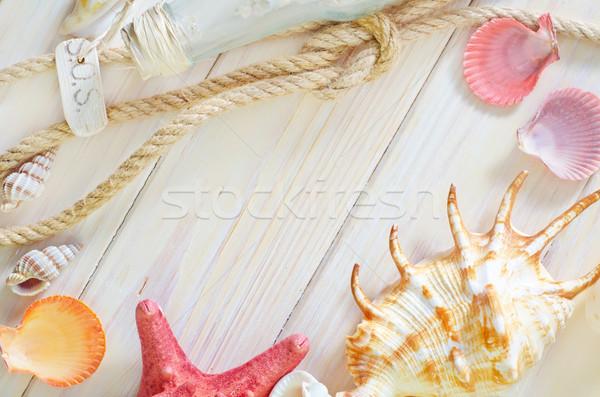 Kagylók fa terv homok kábel kagyló Stock fotó © tycoon