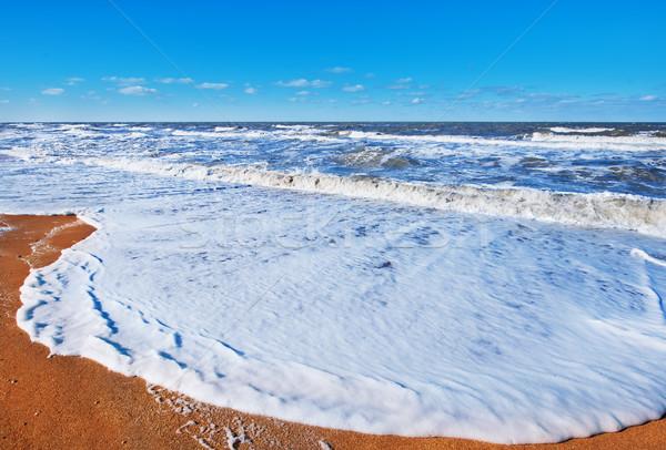 Black Sea, sea coast and sky in Crimea Stock photo © tycoon