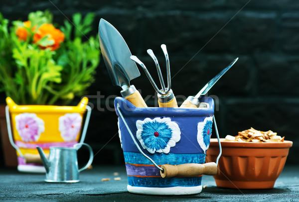 Kert készlet fekete asztal stock fotó Stock fotó © tycoon