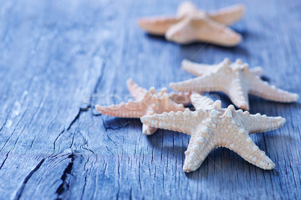 starfish Stock photo © tycoon