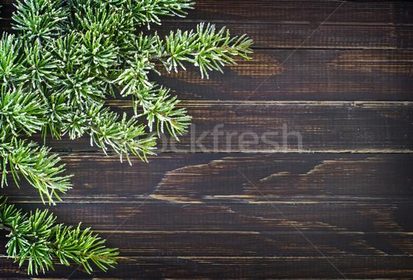 ツリー 抽象的な 自然 フレーム 緑 レトロな ストックフォト © tycoon