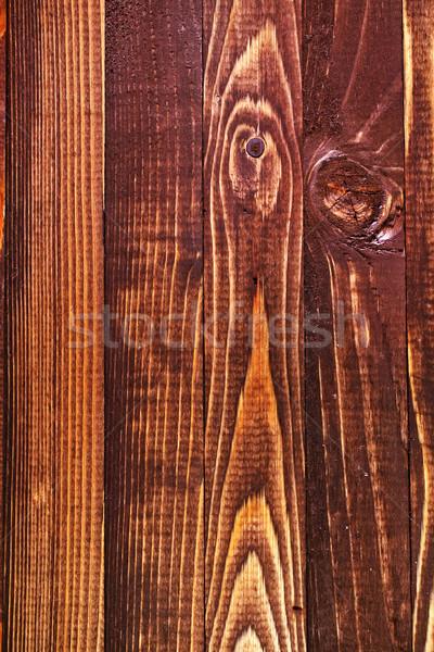 nature background Stock photo © tycoon