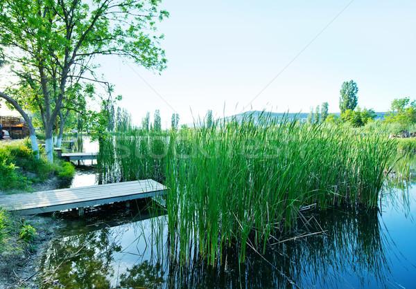 湖 春 家 ツリー 森林 光 ストックフォト © tycoon