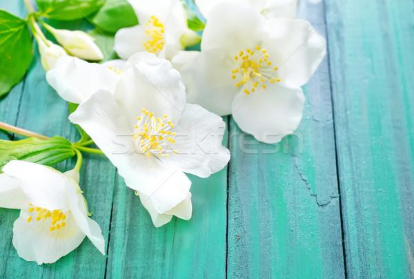 Flores árbol primavera forestales fondo verde Foto stock © tycoon