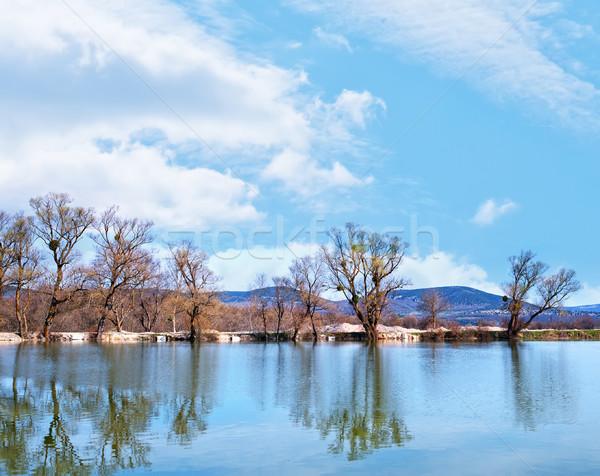 природы озеро воды дерево весны трава Сток-фото © tycoon