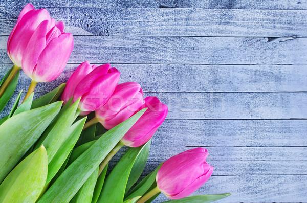 Fiori tulipani Pasqua fiore primavera sole Foto d'archivio © tycoon