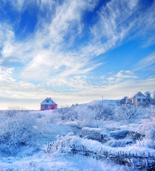 Kış gökyüzü alan buz yeşil mavi Stok fotoğraf © tycoon