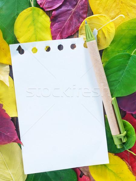 Sonbahar yaprakları ahşap yaprakları notepad ofis doku Stok fotoğraf © tycoon
