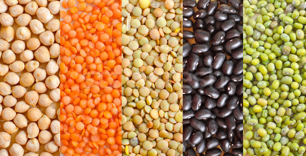 different kind of beans Stock photo © tycoon