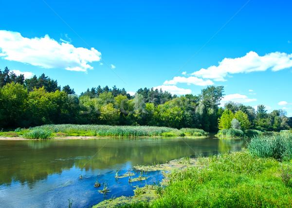 summer lake Stock photo © tycoon