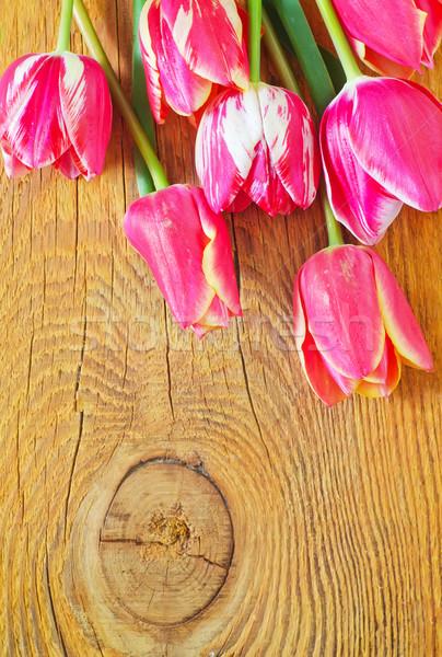 Tulips Сток-фото © tycoon