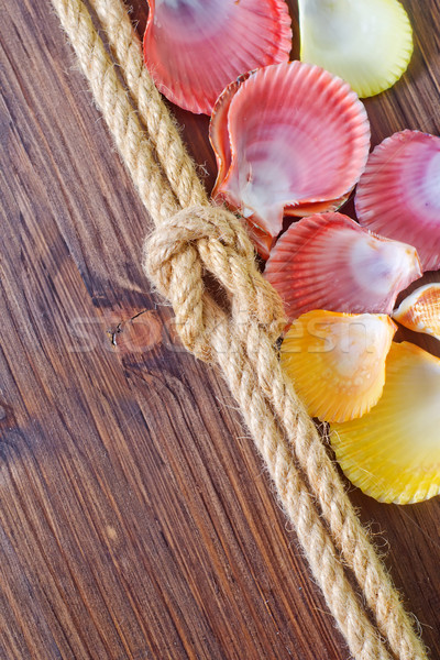 морем снарядов веревку дизайна кадр столе Сток-фото © tycoon