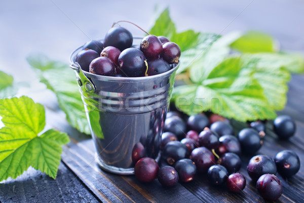 black currant Stock photo © tycoon