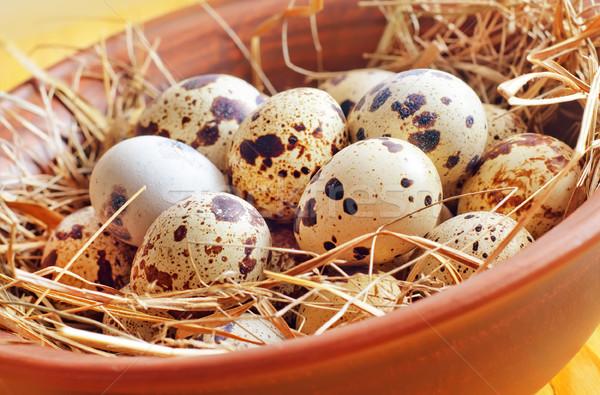 生 卵 健康 鳥 鶏 グループ ストックフォト © tycoon