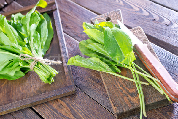 fresh sorrel Stock photo © tycoon