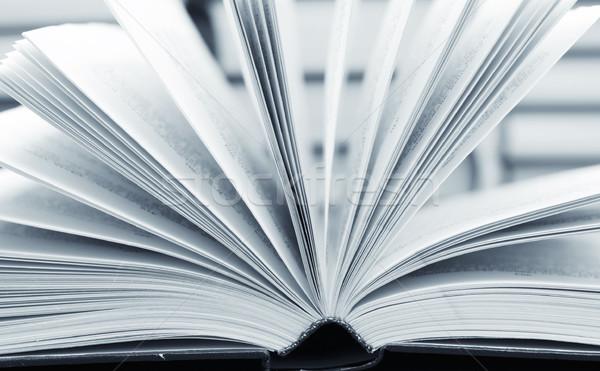 Nyitott könyv üzlet iroda könyv háttér tudomány Stock fotó © tycoon
