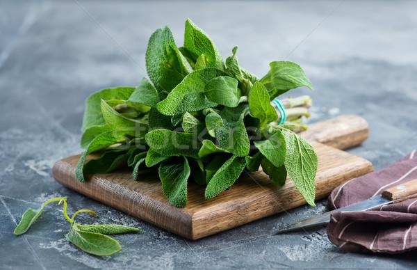 新鮮な セージ 木板 表 緑 薬 ストックフォト © tycoon