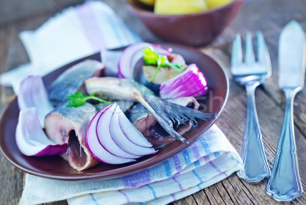 herring Stock photo © tycoon
