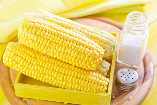 Kukurydza żywności słońce charakter liści zielone Zdjęcia stock © tycoon