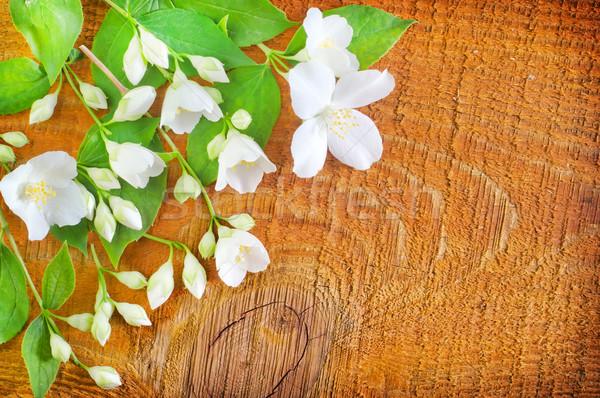 Jázmin fából készült textúra tavasz természet terv Stock fotó © tycoon