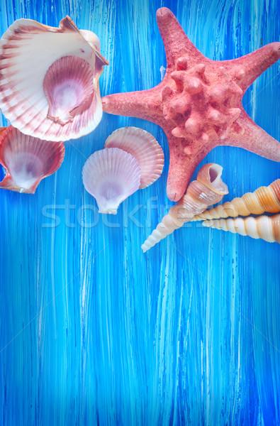 海 シェル 青 ボード ビーチ デザイン ストックフォト © tycoon