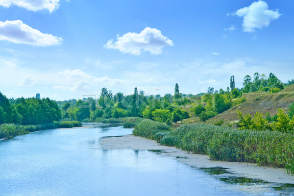 Río Ucrania grande cielo azul cielo árbol Foto stock © tycoon