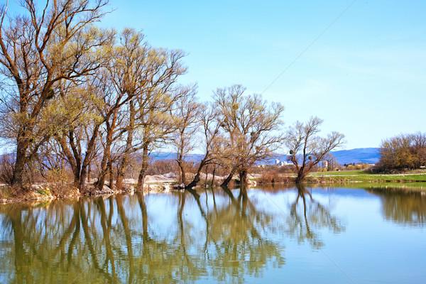 Сток-фото: природы · озеро · воды · дерево · трава · лес