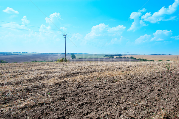 ploughed field with sky Stock photo © tycoon