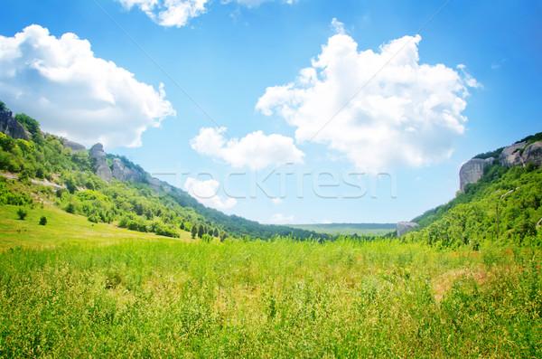nature Stock photo © tycoon