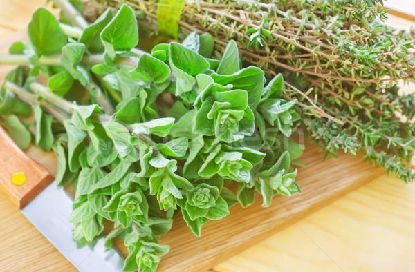 орегано древесины лист завода приготовления свежие Сток-фото © tycoon