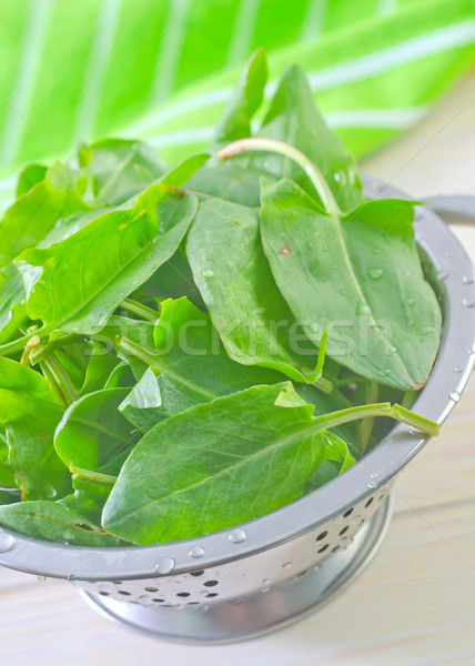 sorrel Stock photo © tycoon